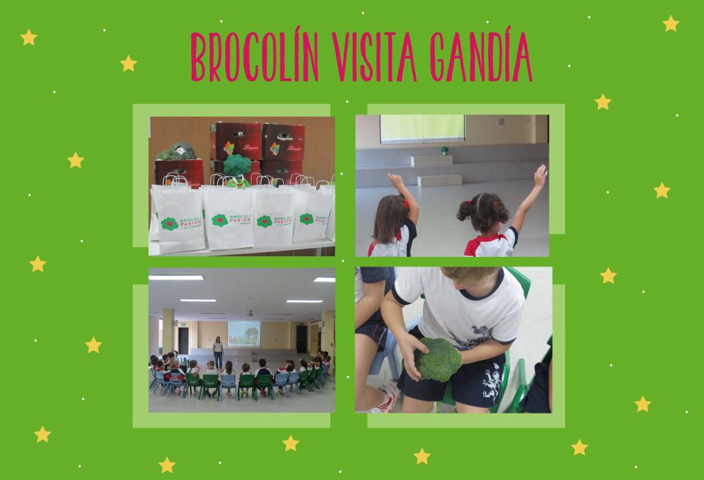 Brocolin en Gandía